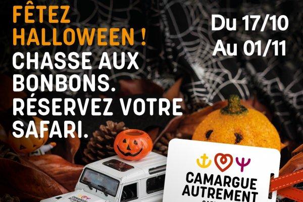 Safari Halloween avec Camargue Autrement