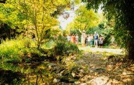 Parc floral 5 continent 1