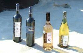 Vin Cuvée Prestige Domaine Petit Chaumont
