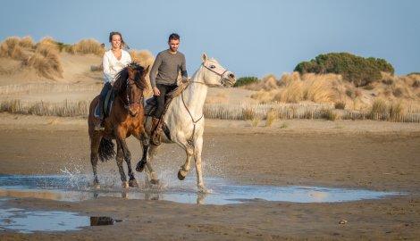 cheval balade plage