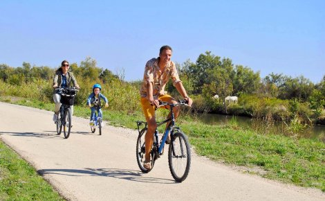 viarhona famille vélo